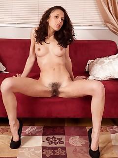 Hairy Divas Pussy Pics